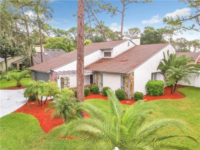 Tampa Single Family Home For Sale: 12901 Brushy Pine Place