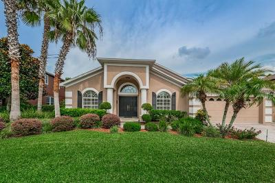 Odessa Single Family Home For Sale: 16203 Nikki Lane