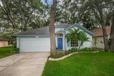 Tampa Single Family Home For Sale: 4507 Hidden Shadow Drive