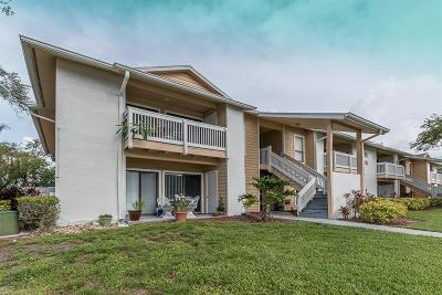 Palm Harbor Condo For Sale: 455 Alt 19 S #221