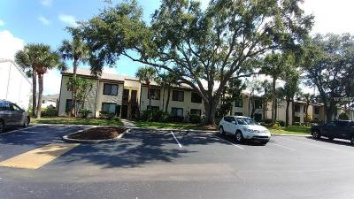 Tarpon Springs Condo For Sale: 345 Moorings Cove Drive #345H