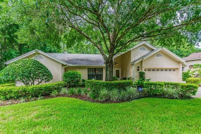 Tarpon Springs Single Family Home For Sale: 941 Centerwood Drive