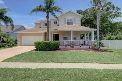 Palm Harbor Single Family Home For Sale: 1895 Wisconsin Avenue