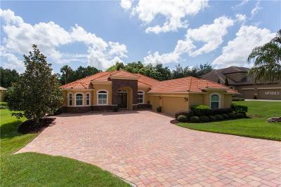 Dade City Single Family Home For Sale: 13140 Tradition Drive