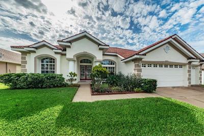 Tarpon Spring, Tarpon Springs Single Family Home For Sale: 621 Salt Lake Drive
