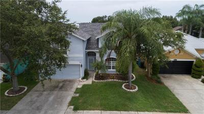Tampa Single Family Home For Sale: 9610 Long Meadow Drive