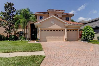 Palm Harbor Single Family Home For Sale: 2641 Grand Lakeside Drive