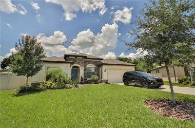 Valrico Single Family Home For Sale: 2911 Shetland Ridge Drive
