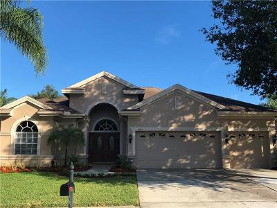 Palm Harbor Single Family Home For Sale: 4041 Ligustrum Drive