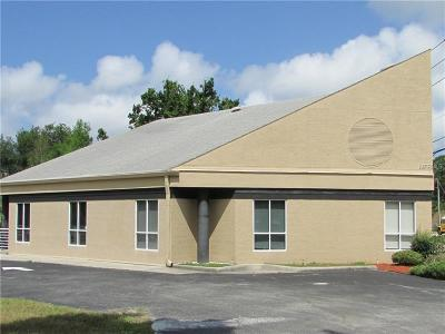 Palm Harbor Commercial For Sale: 3720 Tampa Road #2