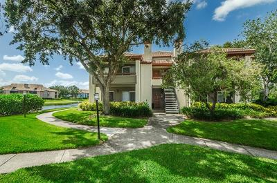 St Petersburg Condo For Sale