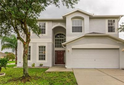 Wesley Chapel Single Family Home For Sale: 27042 Silverleaf Way