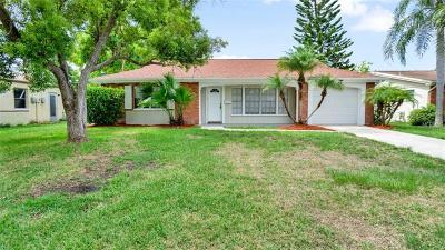 New Port Richey Single Family Home For Sale: 4132 Stratfield Drive