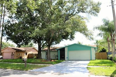 Tampa Single Family Home For Sale: 15911 Crying Wind Drive