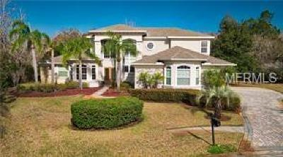 Pinellas County Rental For Rent: 180 Keystone Palms Boulevard