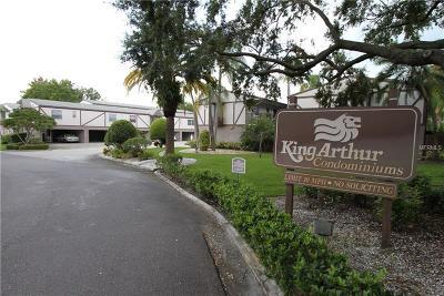 Dunedin Condo For Sale: 1126 King Arthur Court #410