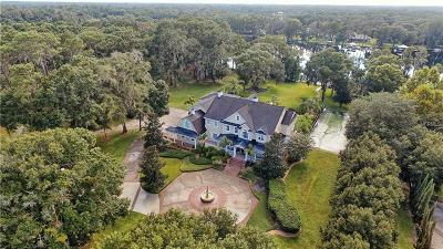 Odessa FL Single Family Home For Sale: $4,499,999
