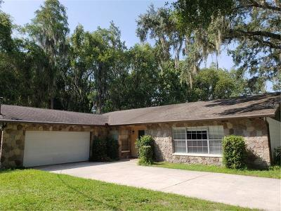 Lutz Single Family Home For Sale: 17018 Dennis Road