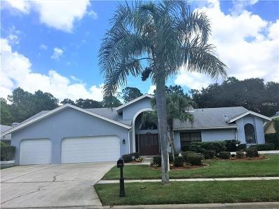 Palm Harbor Single Family Home For Sale: 3780 Windber Boulevard