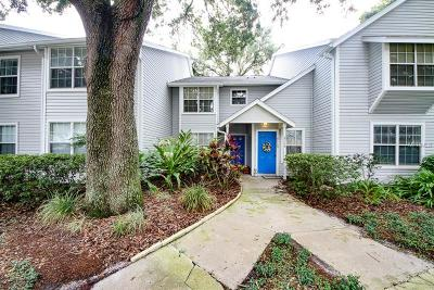 Tampa Townhouse For Sale: 3115 Valley Oaks Drive