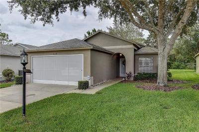 Pasco County Single Family Home For Sale: 18138 Webster Grove Drive