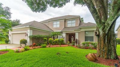 Tampa Single Family Home For Sale: 6008 Williamsburg Way