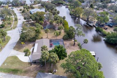 Tarpon Springs Single Family Home For Sale: 754 Seminole Boulevard