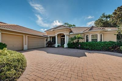 Palm Harbor Single Family Home For Sale: 865 Skye Lane