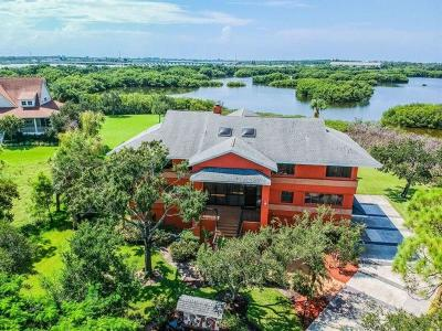 Seminole Single Family Home For Sale: 9025 Baywood Park Drive