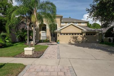 Tarpon Springs Single Family Home For Sale: 3022 Northfield Drive