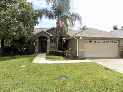 New Port Richey Single Family Home For Sale: 1460 Davenport Drive