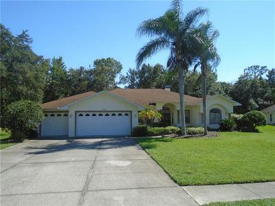 New Port Richey Single Family Home For Sale: 10102 Maybrook Court