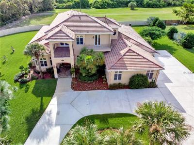 Tarpon Springs Single Family Home For Sale: 1208 N Jasmine Avenue