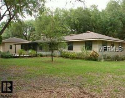 Safety Harbor Single Family Home For Sale: 3301 Meander Lane