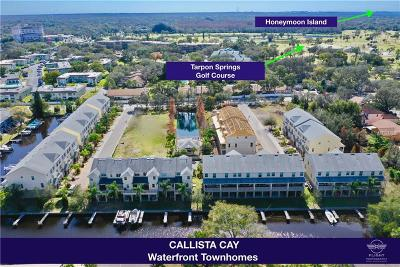 Tarpon Springs Townhouse For Sale: 874 Callista Cay Loop #38