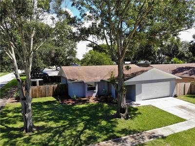 Palm Harbor Single Family Home For Sale: 1343 Homestead Drive