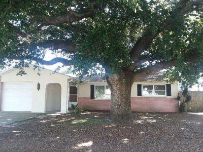 New Port Richey, New Port Richie Single Family Home For Sale: 6222 Moray Avenue
