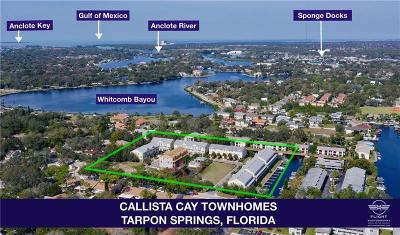 Tarpon Springs Townhouse For Sale: 827 Callista Cay Loop #57