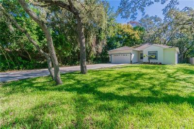 Tarpon Springs Single Family Home For Sale: 1752 Poinsettia Avenue