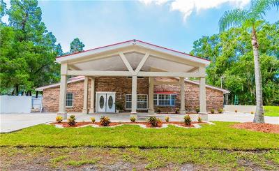 Tampa Single Family Home For Sale: 12510 Memorial Highway