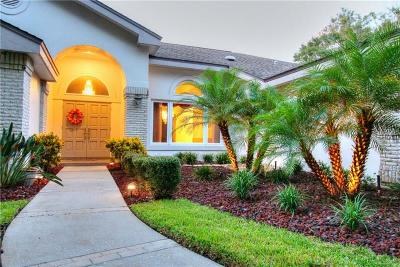 Clearwater, Cleasrwater, Clearwater` Single Family Home For Sale: 2992 Elysium Way