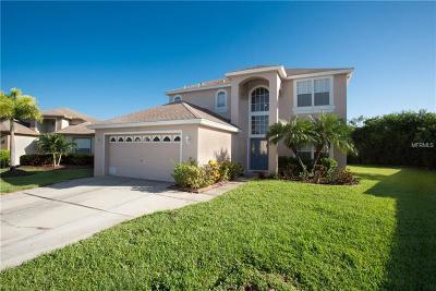 St Petersburg Single Family Home For Sale: 872 Addison Drive NE