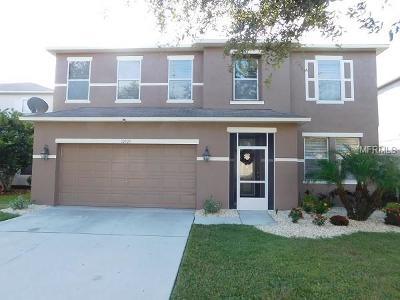 Riverview Single Family Home For Sale: 10505 Boyette Creek Boulevard