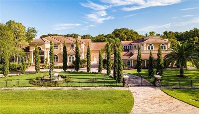 Tarpon Spring, Tarpon Springs Single Family Home For Sale: 559 Austin Drive