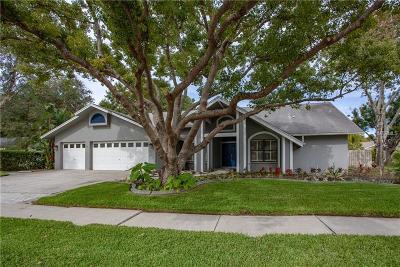 Palm Harbor Single Family Home For Sale: 1545 Virginia Avenue