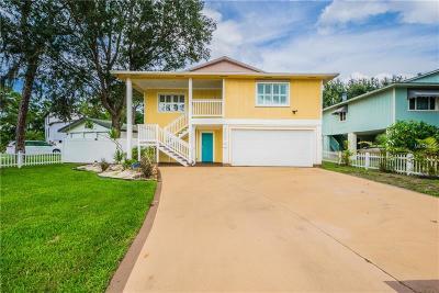 St Petersburg Single Family Home For Sale: 4035 Alabama Avenue NE