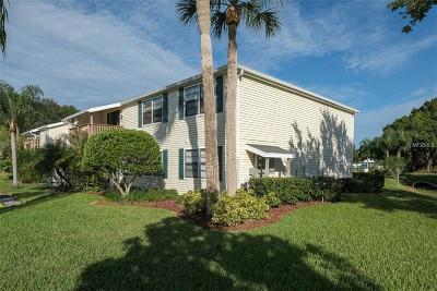 Oldsmar Condo For Sale: 125 Camphor Circle #B