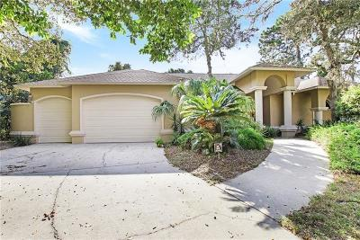 Hernando County, Hillsborough County, Pasco County, Pinellas County Single Family Home For Sale: 10012 Fountain Court