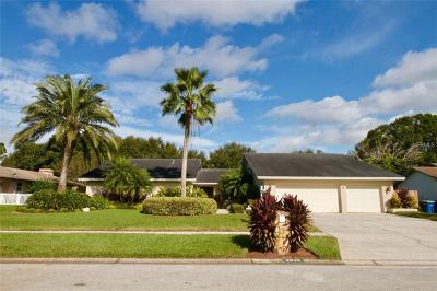 Clearwater, Cleasrwater, Clearwater` Single Family Home For Sale: 2836 Meadow Hill Drive N