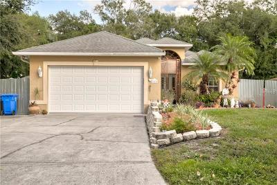 Tampa FL Single Family Home For Sale: $325,000
